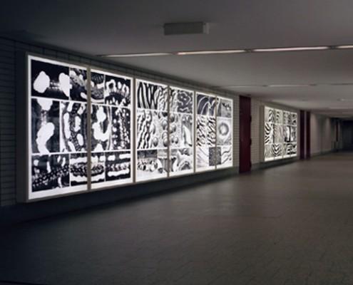 Schreib+Keppler Lichtkunst Leuchtkasten International